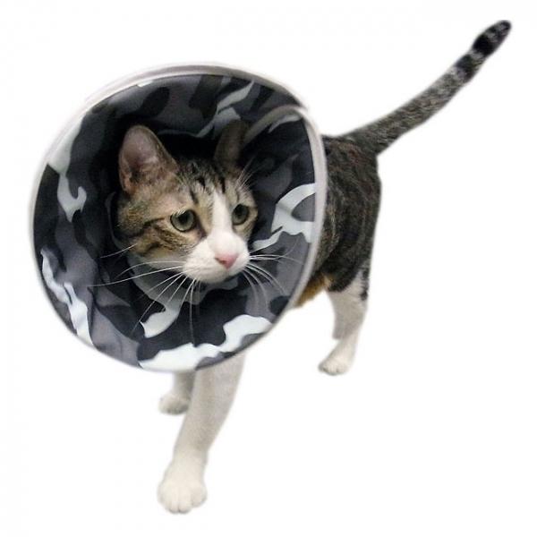 【Fancy Pets】 防護頸套/頭套-酷炫迷彩