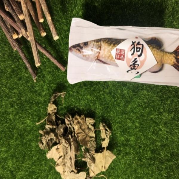 【貓咪旺農場】100%木天蓼填充玩具-小狗魚