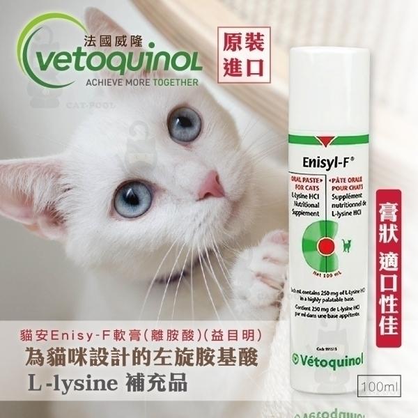 【即期良品/出清品】法國威隆-貓安EnisyF軟膏(離胺酸)(益目明)100ml(公司正貨)