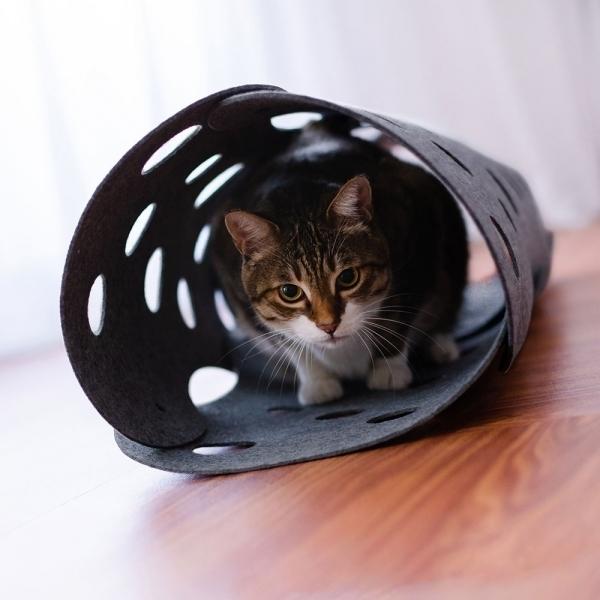 【LIFEAPP】洞洞樂貓隧道